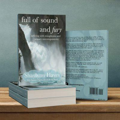 BookSoundFury
